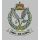 Army Air Corps Polo shirt